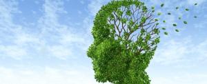 Laurea Magistrale in Psicologia clinica